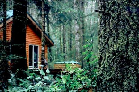 Big Tree Cottage- Quadra Island, BC