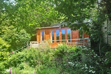 Dragonfly Cabin near Tintagel
