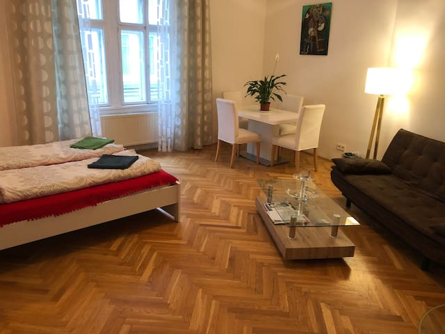 Big, lovely room close to the City Center