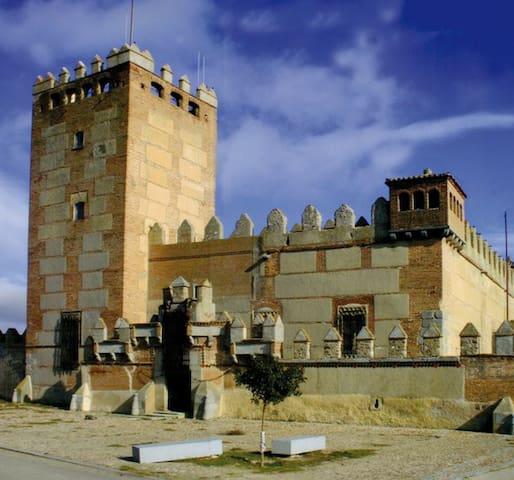 Narros de Saldueña的民宿