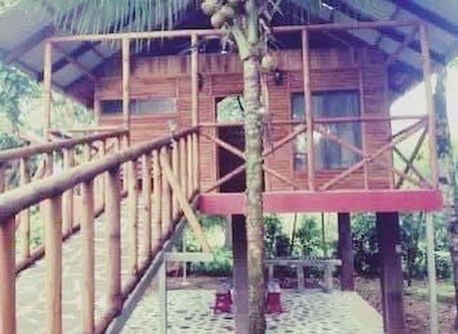 Enhacore Treehouse Log Cabins
