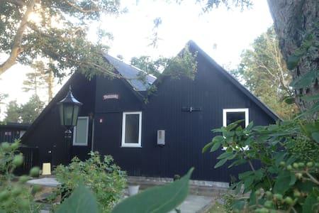 Cozy Holiday cottage at Ringkøbing Fjord