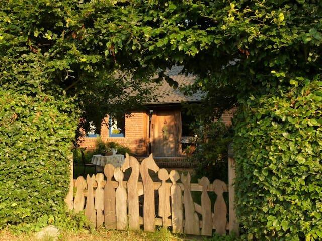 Borgholzhausen的民宿