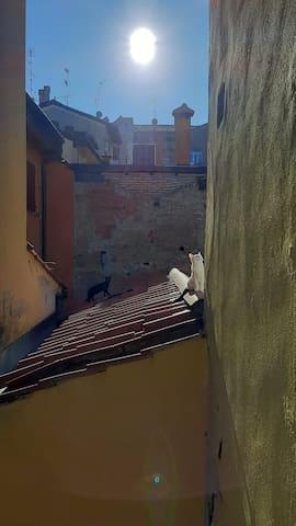 博洛尼亚的民宿