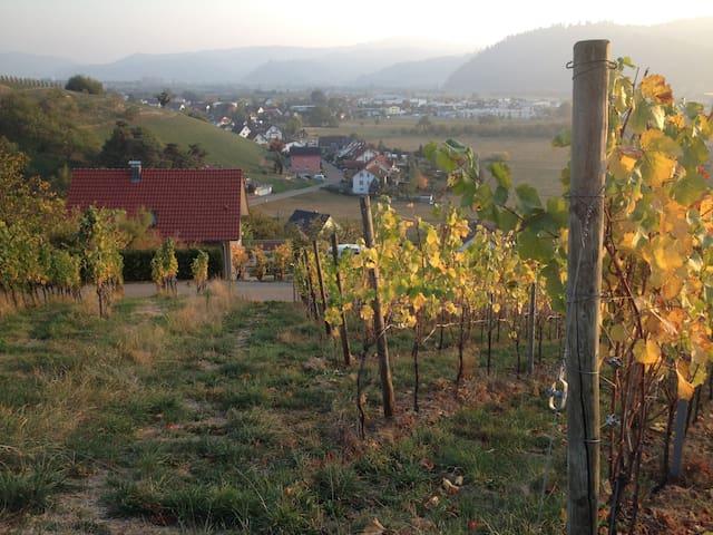 Ohlsbach的民宿