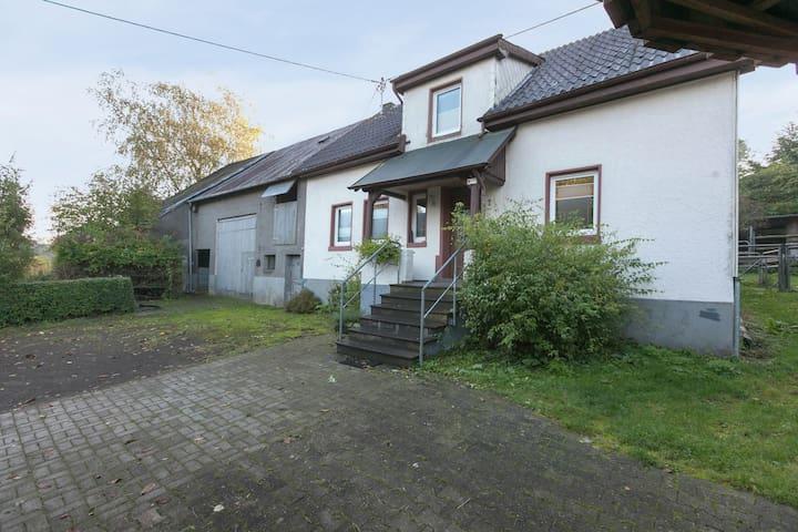 Inviting Villa in Steineberg near Forest