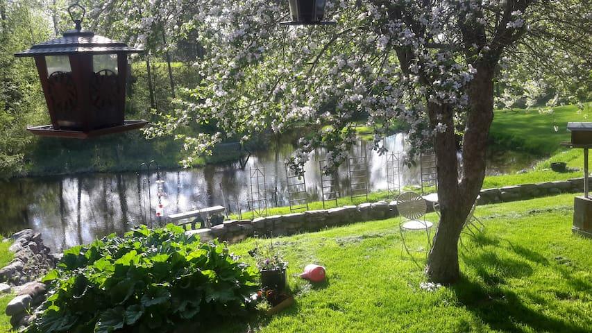 哥伦比亚瀑布(Columbia Falls)的民宿