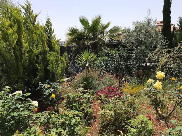 Ramallah的民宿