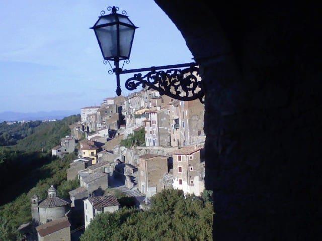 Vignanello的民宿