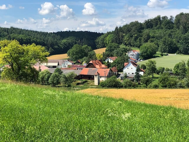 Sinsheim的民宿
