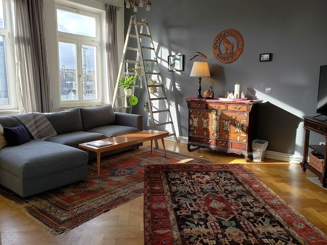 Charming 2 rooms next to Hbf: travel easy & comfy!