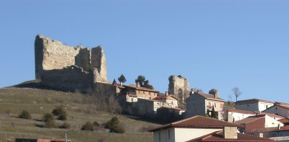 Cabrejas del Pinar的民宿