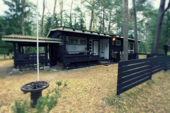 Kloogaranna的民宿
