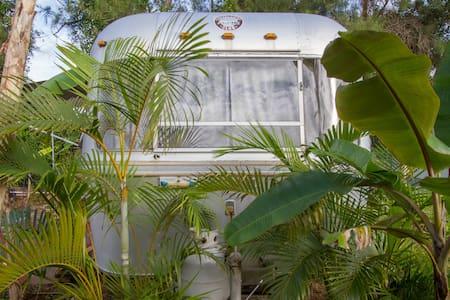 1977 Avion Close Everglades & Keys