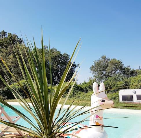 Avignonet-Lauragais的民宿