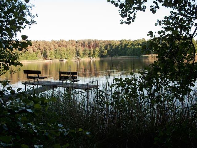 Idyllische Datscha im Wald am See mit Boot