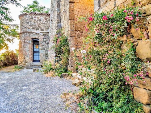Castiglioncello del Trinoro的民宿