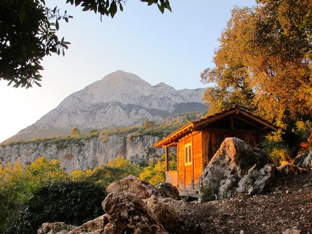 Geyikbayiri Konyaalti的民宿