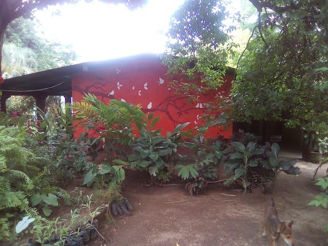 Mozonte的民宿