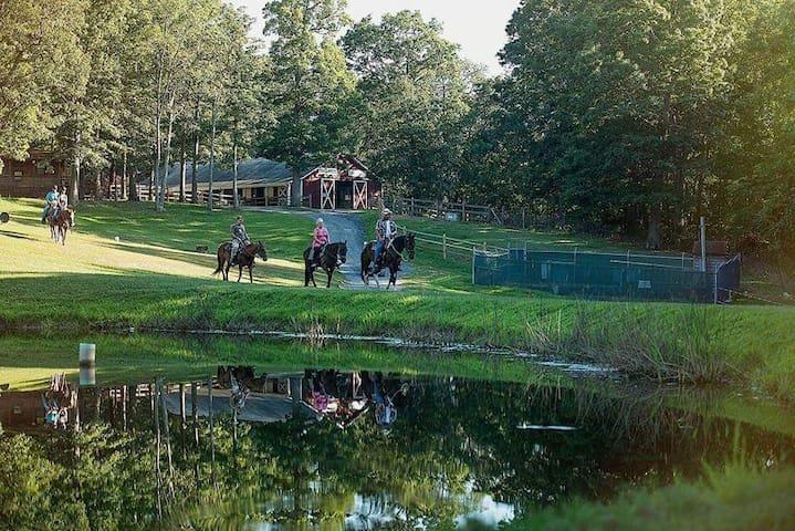 Skyline Ranch Resort. Great Family Resort