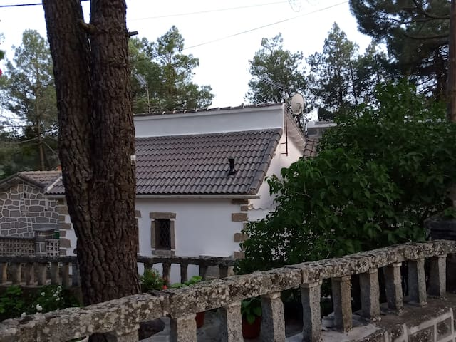 El Pimpollar的民宿
