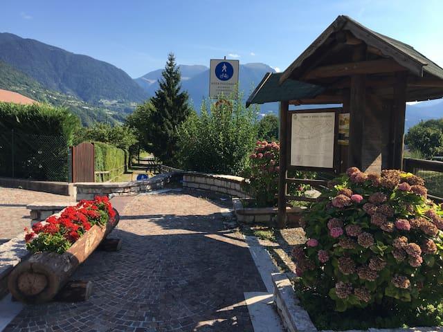 Borgo Valsugana的民宿