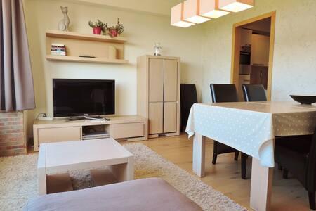 Knokke-Heist appartement met frontaal zeezicht