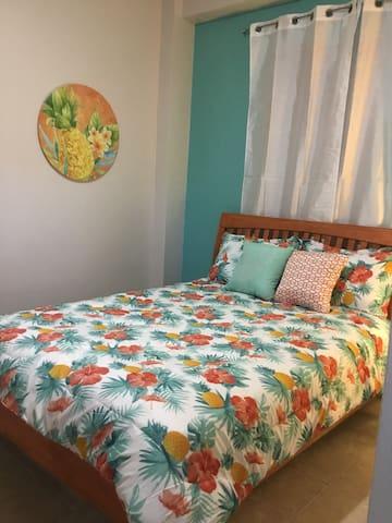 Casa San Juan #3+Car($)entire apartment in Vieques