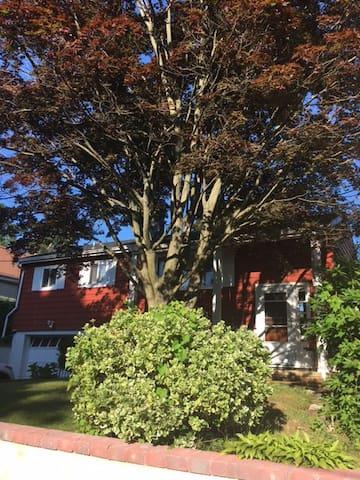 Shade tree retreat
