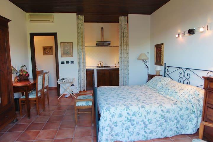 Castel Rocchero的民宿