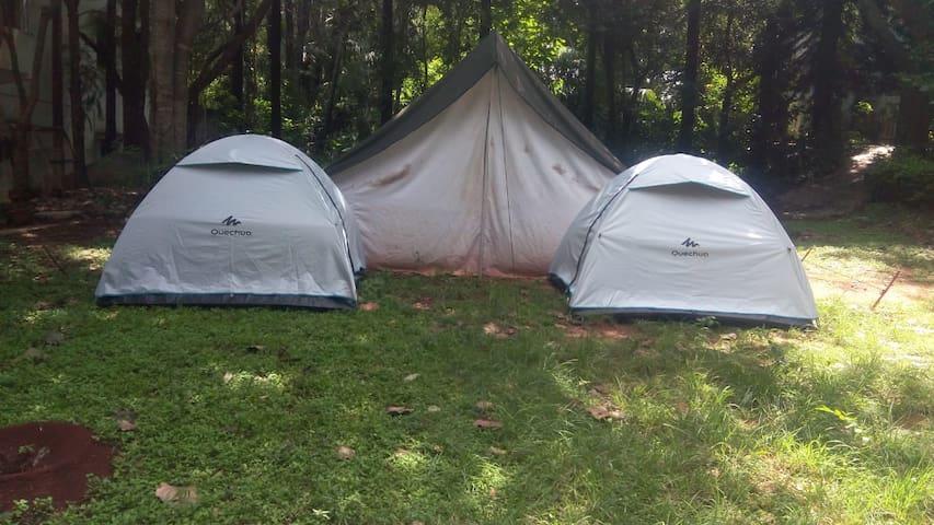 Tent Camping Elagiri 3