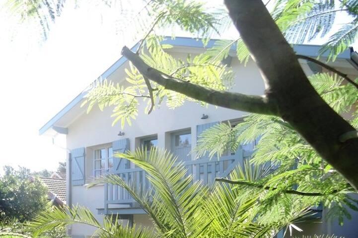 Nice apartment in Le Cap Ferret - Mimbeau
