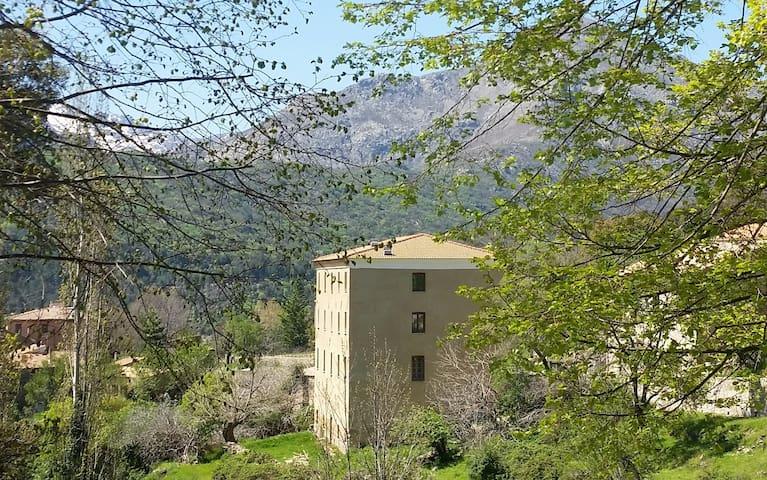Olmi-Cappella的民宿