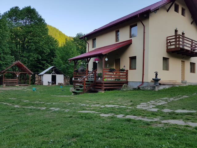 Cazaci的民宿