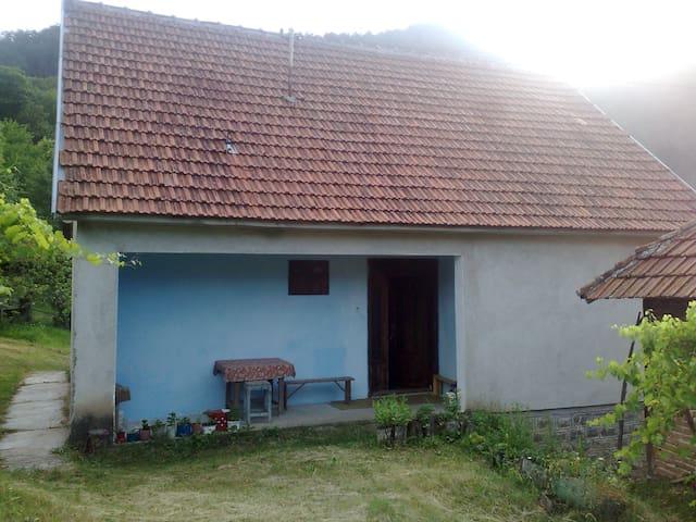 Jošanička Banja的民宿