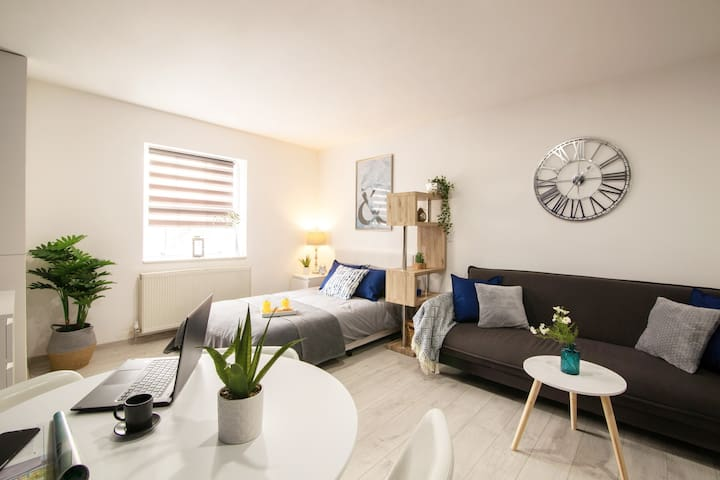 Luxury Smart Modern Studio