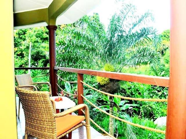 Seychelles  Aux Cap Mahe的民宿