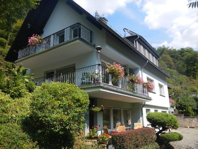Sankt Goarshausen的民宿