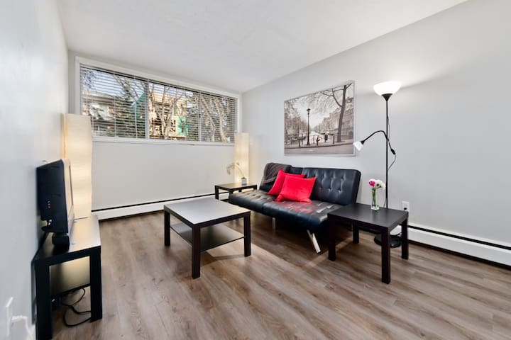 Cozy Modern 1 Bedroom Near Downtown & Airport