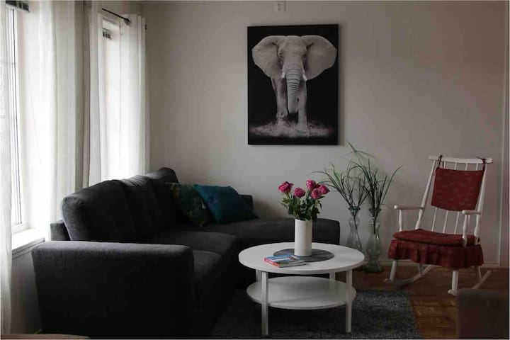 Nice apartment in Leknes and close to airport