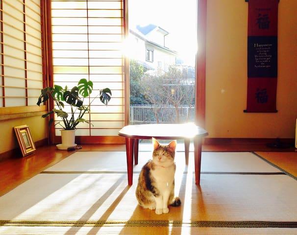 ❤️Beach Homestay Surf ❤️ワーケーション@湘南茅ヶ崎+江ノ島+鎌倉