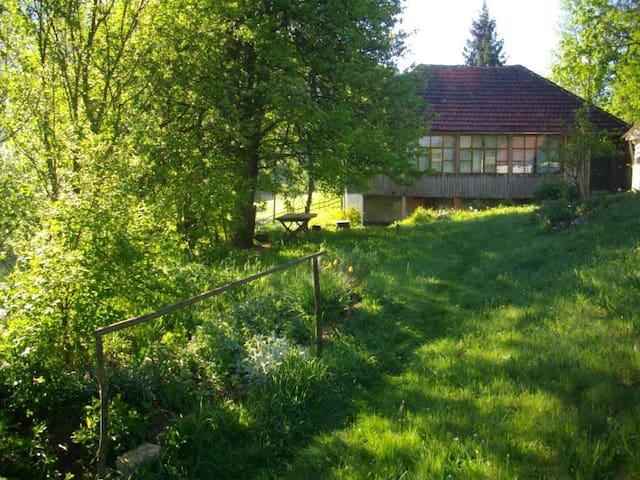 Avram Iancu的民宿