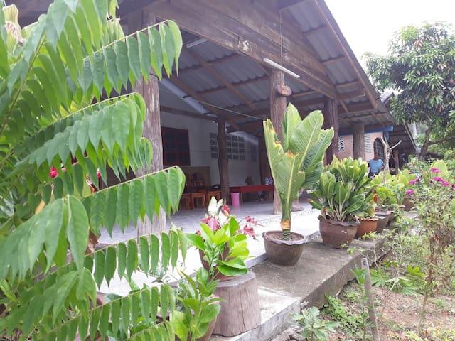 Kalong的民宿