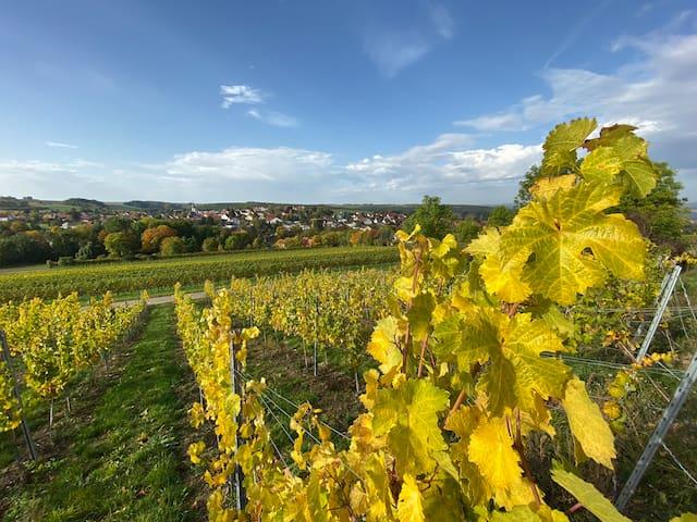 Appenheim的民宿