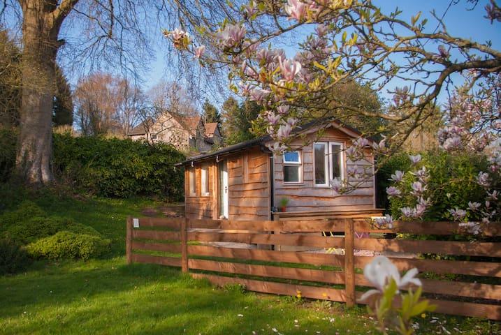 Copper Beech Cabin