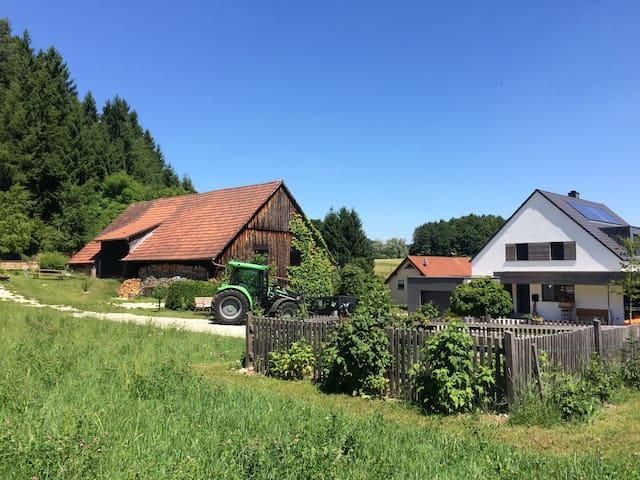 Obertrubach的民宿
