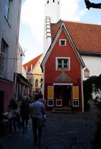 "Unique Old Town ""gnome"" house"