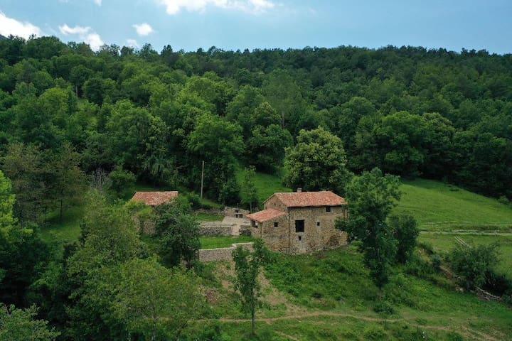 Cal Tarí: casa rural envoltada de bosc i cavalls