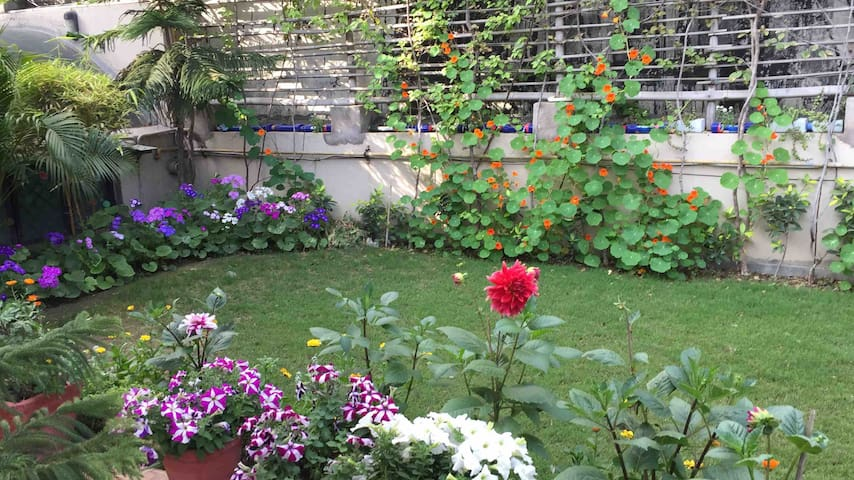 Lavish independent 2 room apartment & terrace lawn