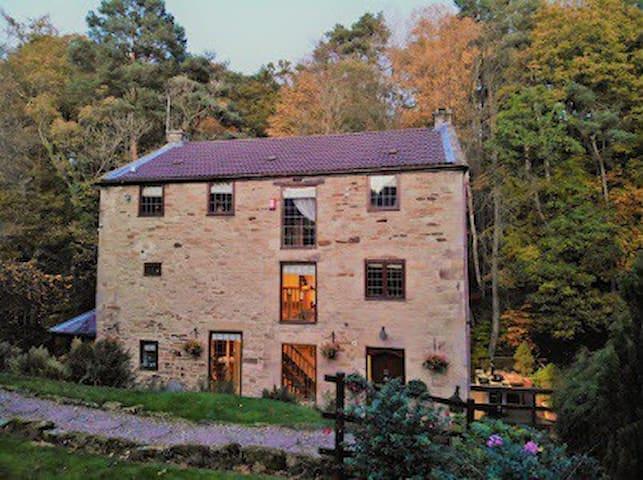 Hamsterley Mill的民宿